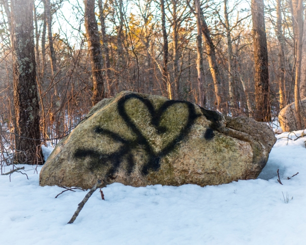 Found in the woods on Valentine's day.